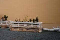 Zwischenbepflanzung